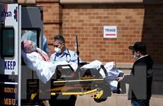 Brazil trở thành nước có số ca nhiễm SARS-CoV-2 nhiều thứ 5 thế giới