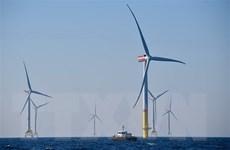 IEA: Năng lượng tái tạo là trọng tâm trong kế hoạch khôi phục kinh tế
