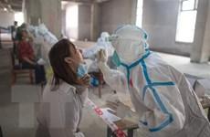 Trung Quốc không thêm ca nhiễm trong nước, Hàn Quốc ghi nhận 16 ca mới