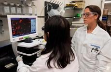 Công ty Mỹ thử vắcxin phòng SARS-CoV-2 trên người tại Australia