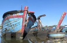 Quảng Ngãi: Nhiều xác tàu đắm tại cảng Sa Huỳnh gây ô nhiễm môi trường