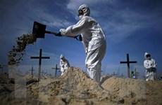 COVID-19: Brazil xếp thứ 2 về số tử vong, châu Phi diễn biến phức tạp