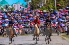 Bổ sung một số điều về kinh doanh đặt cược đua ngựa và bóng đá quốc tế