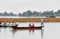Lũ lụt nghiêm trọng làm hơn 1 triệu người dân Ấn Độ phải sơ tán