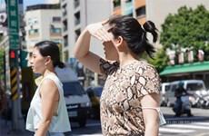 Đài Loan trải qua ngày tháng Sáu nóng nhất trong 124 năm qua