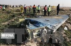 Thụy Điển: Iran bồi thường gia đình nạn nhân vụ bắn nhầm máy bay