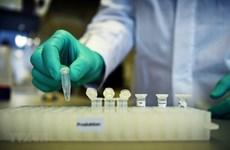 Chuyên gia y tế hàng đầu của Mỹ tiết lộ về vắcxin kháng COVID-19