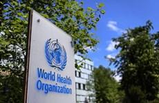 """Đức: Mỹ rút khỏi WHO là """"bước thụt lùi trong hợp tác toàn cầu"""""""