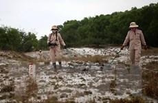 Thúc đẩy hợp tác để xử lý bom mìn sau chiến tranh ở Quảng Trị