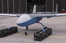 SOHR: Máy bay trinh sát không người lái của Nga bị bắn hạ ở Syria
