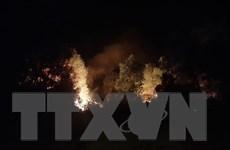 Nghệ An đã dập tắt được đám cháy rừng ở xã Diễn Lộc