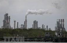 Lượng khí methane phát thải toàn cầu tăng 9% trong thập kỷ qua