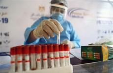 Australia xét nghiệm máu xác định người nhiễm COVID-19 trong 20 phút