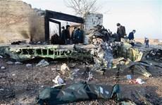 Iran cử đoàn sang Ukraine thảo luận bồi thường bắn nhầm máy bay