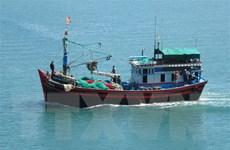 Khắc phục thẻ vàng IUU: Ngăn chặn tàu cá khai thác hải sản trái phép