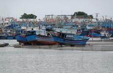 Cảng cá bị bồi lấp nghiêm trọng khiến ngư dân Ninh Thuận gặp khó