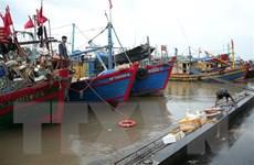 Các tỉnh ven biển từ Quảng Ninh đến Cà Mau chủ động ứng phó áp thấp