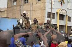 Đức, Anh và Pháp tiếp tục duy trì quân đội tại Mali bất chấp đảo chính
