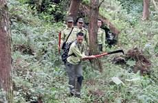 Những người lính ngày đêm giữ rừng nguyên sinh trên đỉnh Sam Síp
