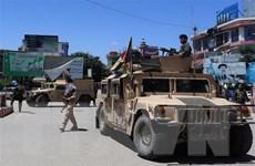 Chính quyền Afghanistan, Taliban nhất trí thời điểm đàm phán hòa bình