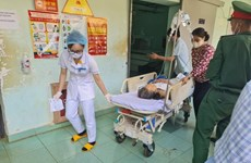 """Đắk Nông: Trâu """"điên"""" tấn công làm ít nhất 5 người bị thương"""