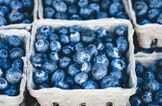 Sự thật về màu sắc thực phẩm có thể khống chế cảm giác thèm ăn