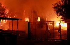Hy Lạp: Hàng nghìn người sơ tán do cháy trại tị nạn trên đảo Lesbos