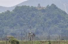 Giới chức an ninh Hàn Quốc thảo luận thúc đẩy hòa bình liên Triều