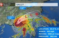 Mỹ: Bão Sally đổ bộ vào đất liền có thể gây lụt lội tại bang Alabama