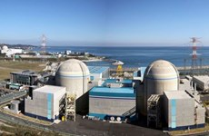 Hàn Quốc và Mỹ họp trực tuyến thảo luận về an ninh hạt nhân