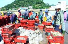 [Photo] Nghệ An: Nhộn nhịp bến cá chợ đầu mối phường Nghi Thủy