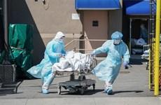 Thế giới ghi nhận hơn 32 triệu ca nhiễm, hơn 980.000 ca tử vong