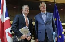 Liên minh châu Âu và Anh bước vào vòng đàm phán cuối đầy căng thẳng