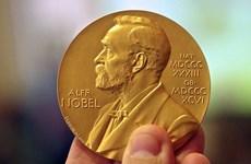 Hồi hộp chờ các chủ nhân các giải thưởng Nobel 2020 lộ diện