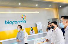 Công ty dược phẩm nhà nước Indonesia công bố giá vắcxin ngừa COVID-19