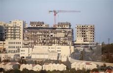 Nhiều nước châu Âu lên án Israel thông qua mở rộng khu định cư
