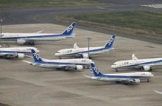 ANA Holdings dùng nhiên liệu máy bay sản xuất từ chất thải thực phẩm