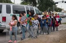 OECD cảnh báo cuộc khủng hoảng tị nạn mới do hậu quả của dịch