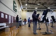 Bầu cử Mỹ 2020: Số cử tri đi bỏ phiếu sớm vượt 80 triệu người