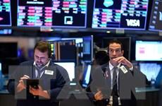 Cổ phiếu công nghệ dẫn dầu đà tăng trên thị trường Phố Wall