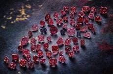 Đóng cửa mỏ kim cương hồng lớn nhất thế giới Argyle