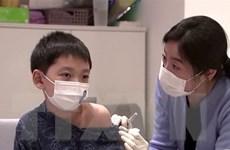 Malaysia cho phép lưu hành lại 2 loại vắcxin phòng cúm của Hàn Quốc