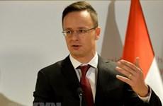 Ngoại trưởng Hungary, Bộ trưởng Tư pháp Đan Mạch nhiễm COVID-19