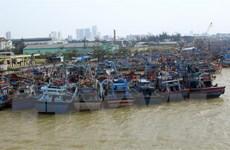 Nghệ An cấm tàu ra khơi, Quảng Nam ra phương án phòng, chống bão