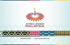 Lãnh đạo 21 nền kinh tế dự khai mạc hội nghị cấp cao APEC trực tuyến