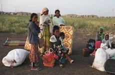 LHQ lên kế hoạch đưa 200.000 người tị nạn Ethiopia tới Sudan