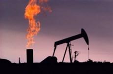 UAE thông báo phát hiện mỏ dầu lớn tại thủ đô Abu Dhabi