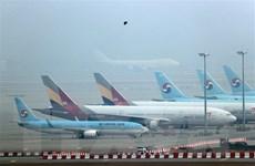 IATA: Dịch COVID-19 khiến doanh thu ngành hàng không lao dốc