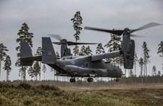 Mỹ triển khai một đơn vị đặc biệt tập trận chung với Estonia