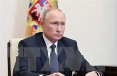 Tổng thống Nga kêu gọi tích cực quảng bá sản phẩm hóa dầu nội địa